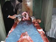 Screamhouse 3 Intestines 1
