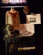 HHN 25 Media (The Walking Dead)