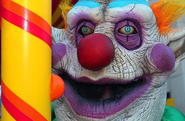 Bibbo the Clown 13