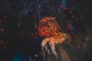 Screenshot 2020-05-24 Halloween Horror Nights ( horrornightsorl) • Instagram photos and videos(48)
