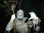 Mummy Returns Mummy