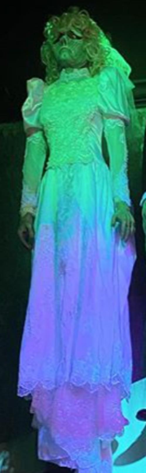 Barbara Maitland