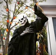 Black Skeletal Stiltwaker 24