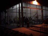 Fright Yard Cage