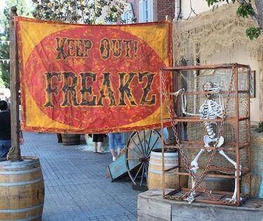 Freakz Sign.jpg