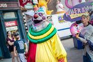 Bibbo the Clown 24