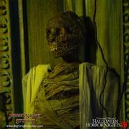 "Screenshot 2020-10-15 FrightNight Studios, LLC on Instagram ""One of the mummy figures we created for Halloween horror night-...-"