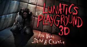 Lunatics Playground.jpg