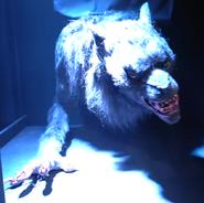 Werewolf (Creepshow)