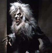 Bad Werewolf Soldier 1