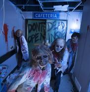 Screenshot 2020-01-15 Halloween Horror Nights - Universal Orlando - Photos(3)