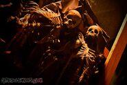 Canyon of Dark Souls 3