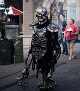 Metal Skeleton 1