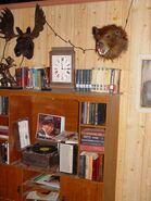 Psychosaraepy 3 Bookshelf