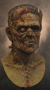 Complete Mask of Frankenstein's Monster