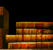 HHN ToT Books