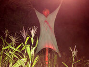 Field of Screams 13