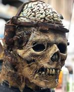 Dr Frankenstein's Failed Experiment Mask