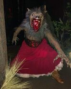 Laurie (Wolf Form)
