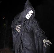 Black Skeletal Stiltwaker 9
