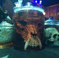 HHN 29 Monster Skull