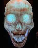 "Screenshot 2020-12-01 USH Hacker on Instagram ""Look familiar """