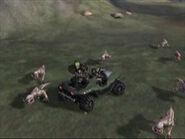 200px-Blind Wolves