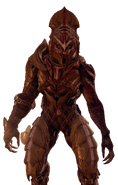 Thel Vadam in Halo 5 Pic