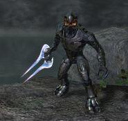 Arbiter wields sword