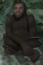Mono Solitario.jpg