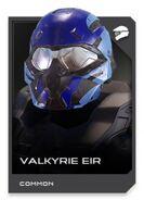 H5G REQ card Casque-Valkyrie EIR