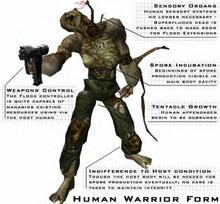 Warrior Form Human2.png