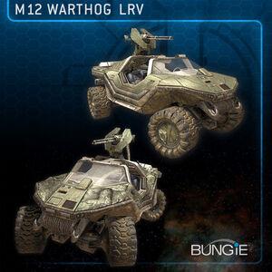 H3 Warthog.jpg
