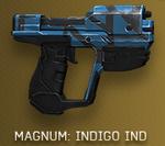 H4 Skin Indigo