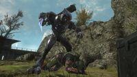 800px-Reach Beta - Elite Assassination