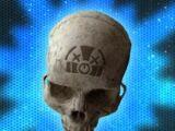 Skull/Halo: Combat Evolved Anniversary