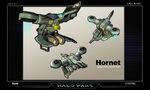 Hornet concept HW