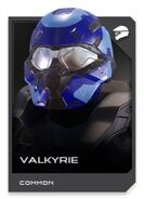 H5G REQ card Casque-Valkyrie