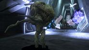 Halo-3-Wallpaper-HALO-chapter-1080p-252-FLOOD-CARRIER