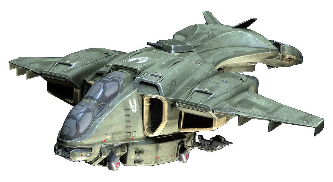 G79H - TC/MA Pelican