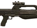 BR55 Service Rifle