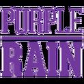 Purple Rainlogo square.png