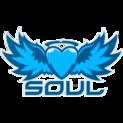 Soullogo square.png
