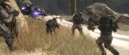 Marines firefight
