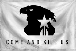 UNSC Challenge Flag Created Era.png