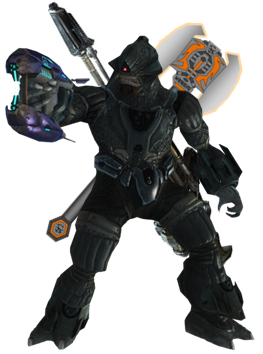 Novus Equipped.png