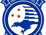 28th Fighter Squadron