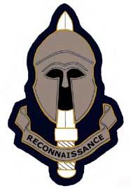 Special Reconnaissance Service