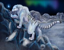 Ice Warmera by Ash Dragon wolf