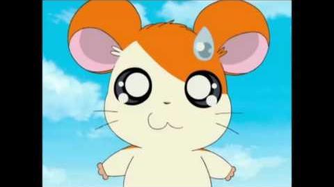 Hamtaro anime sound effects 7